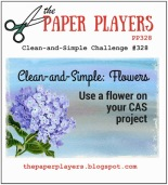 paper-players