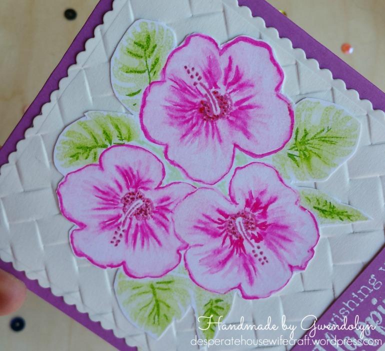 hero arts hibiscus zigs cu