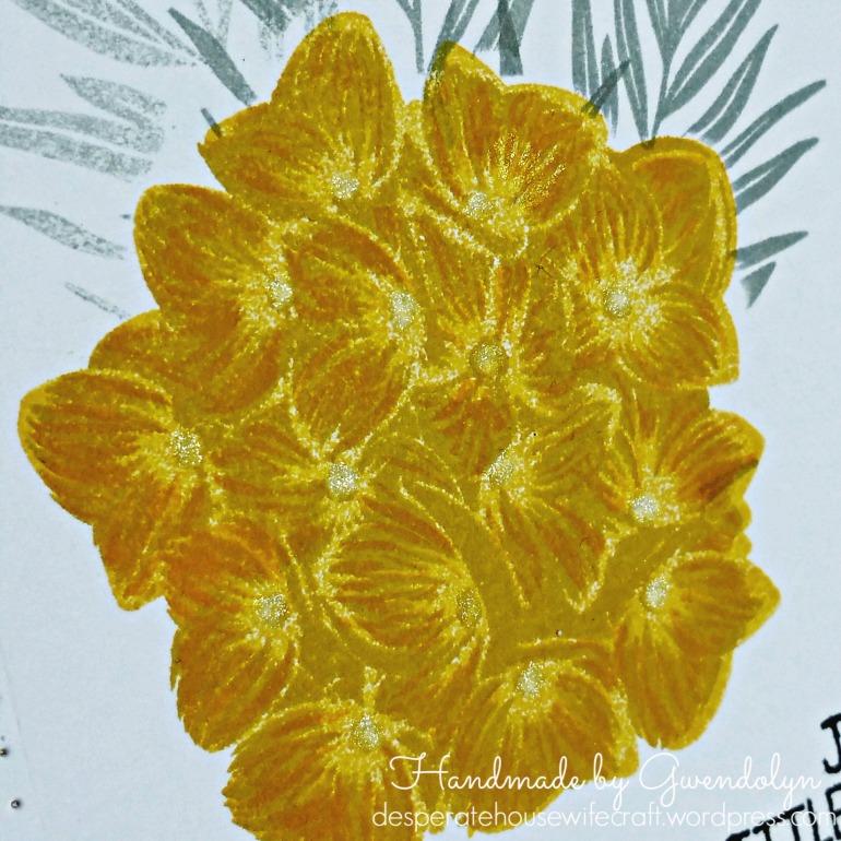 gey n yellow hydrangea cu