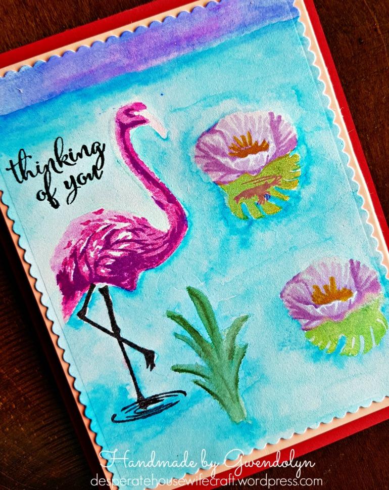 flamingo lake main cu
