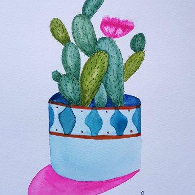cactus ew
