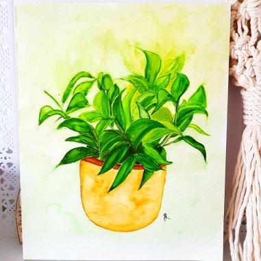 Larissa's plant
