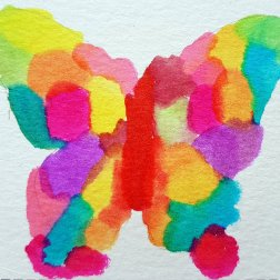 multicolor butterfly1