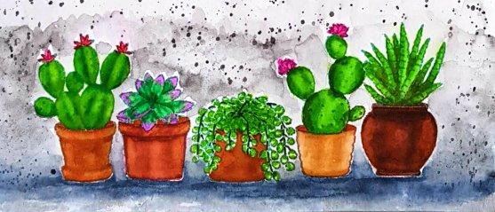cactus ccu.jpg
