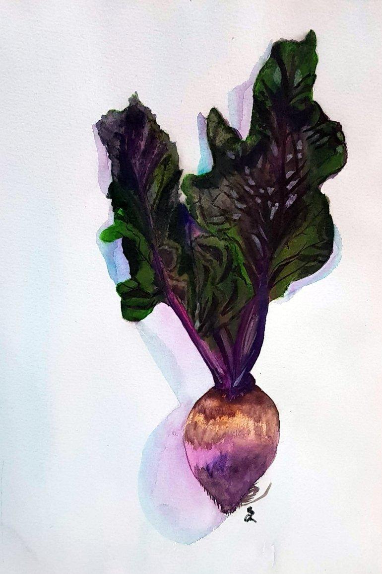 turnip signed.jpg