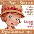 paper shelter.jpg