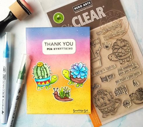 hero arts cactus friends insta
