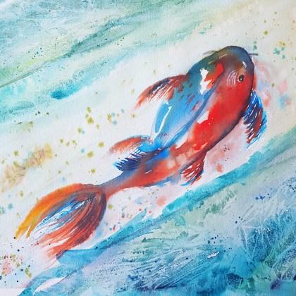 Day 11 koi fish