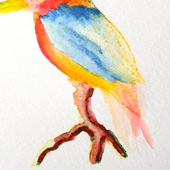 Loose kingfisher5