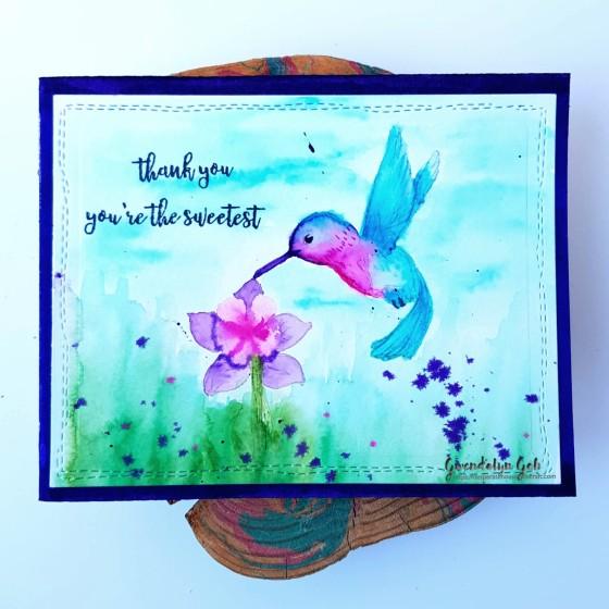 Hero Arts hummingbird cu