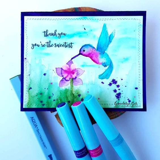 Hero Arts hummingbird prod.jpg